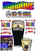 Irish Pub Ansbach - Karaoke Party